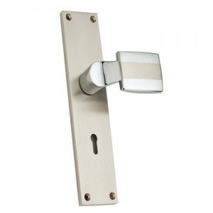 """Barachel"" Zinc Handle with Back Plate"