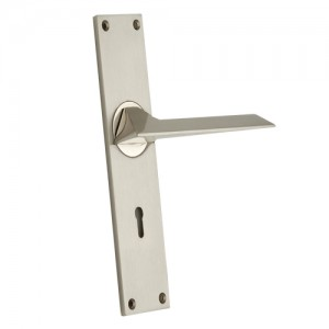 """Camon"" Zinc Handle with Back Plate"