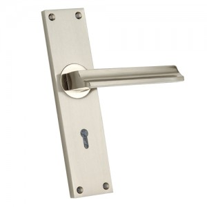"""Diotrephes"" Zinc Handle with Back Plate"