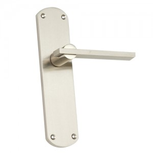 """Palti"" Zinc Handle with Back Plate"