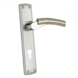 """Vashni"" Zinc Handle with Back Plate"