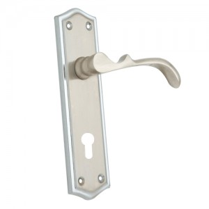 """Zaanannim"" Zinc Handle with Back Plate"
