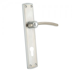 """Zaham"" Zinc Handle with Back Plate"