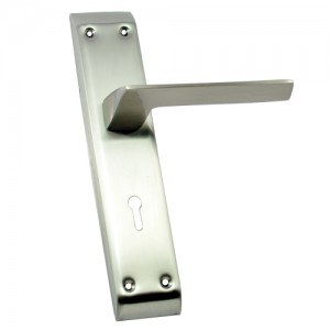 """Ben"" SS Door Handle with SS Plate"