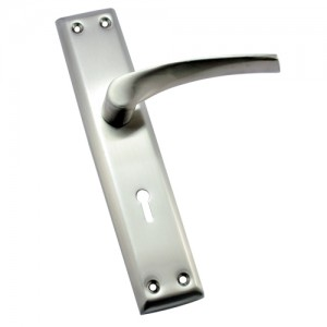 """Sinai"" SS Door Handle with SS Plate"
